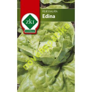 Edina saláta