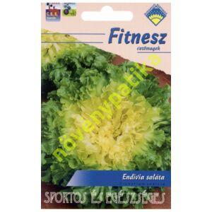 Endívia saláta